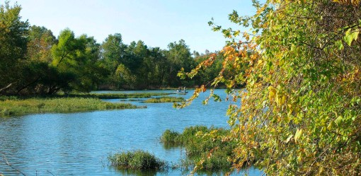 A view of Springfield lake from the Springfield, Missouri Nature Center