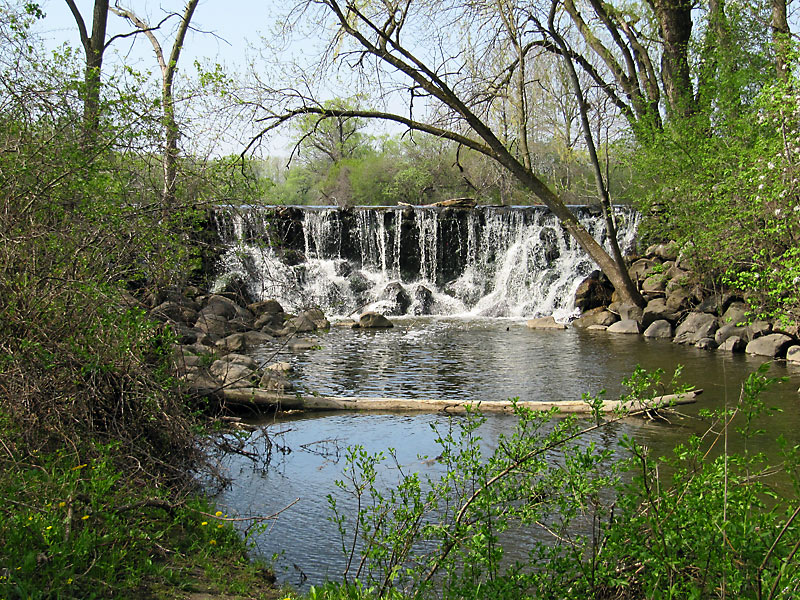 Forest Park Nature Center