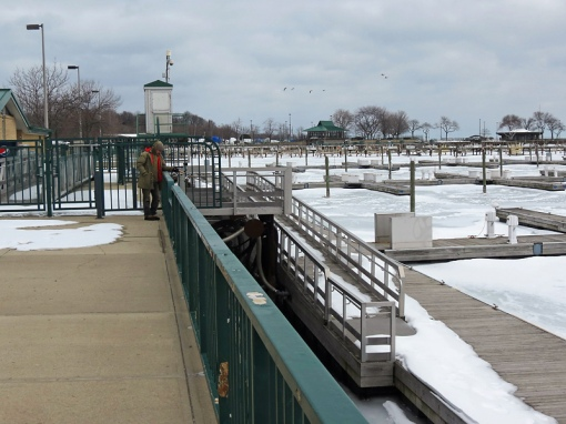 In March there are no boats are birds on the Marina docksas ice has formed and the fishermen are still there