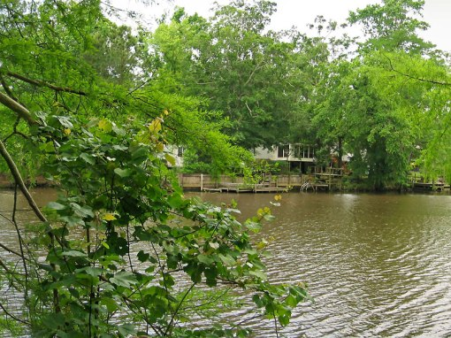 The Calcasieu River drains a largely rural area of forests and bayou country with homes on its banks.