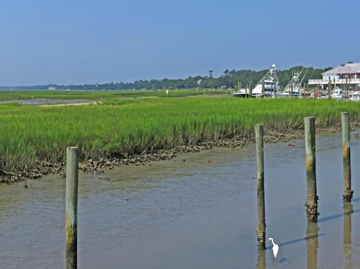 Below Myrtle, Carolina, the Murrells Inlet Salt Marsh waterfront boardwalk can be seen.
