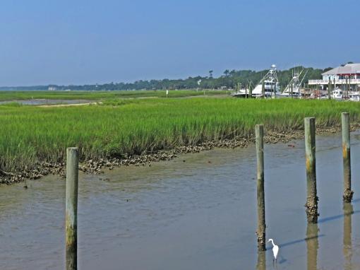 Below Myrtle, Carolina, the Murrells Inlet Salt Marsh waterfront boardwalk can be seen.