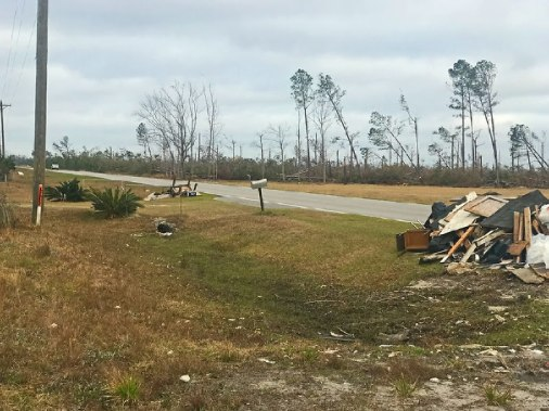 Florida panhandle tree damage